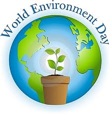 When is the World Environment Day   lowcarbonlife.org